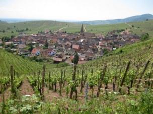 Sommerberg (2)